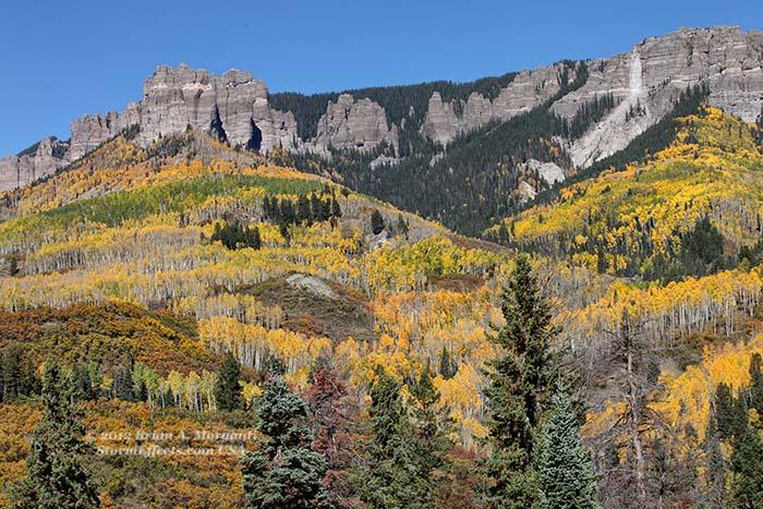 Co Fall Foliage5 Owl Creek Pass Cr7